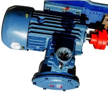Rexroth A10VSO18DRG/31R-PPA12K01 Axial Piston Variable Pump
