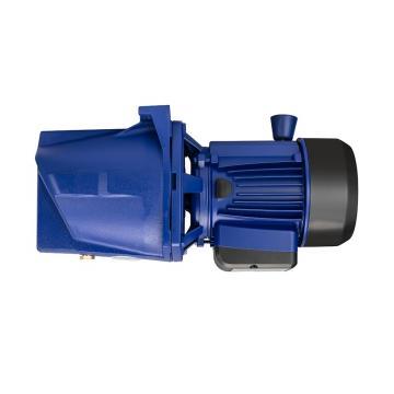 Daikin V8A1RXT-20 Piston Pump