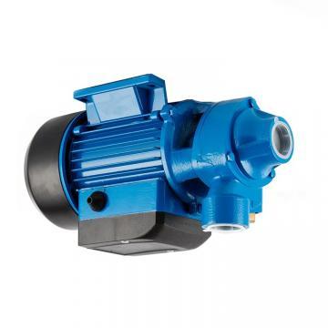 Daikin V38-IRX-95 piston pump