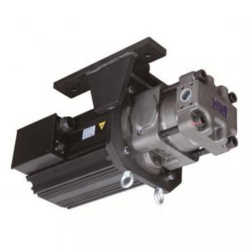 Sumitomo QT5143-125-20F Double Gear Pump