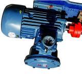 Sumitomo QT6123-160-4F Double Gear Pump