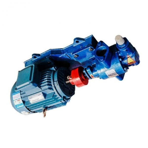 Yuken PV2R23-26-108-F-RAAA-41 Double Vane Pumps #1 image