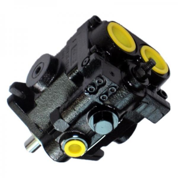 Denison PV10-1L1D-C00 Variable Displacement Piston Pump #1 image