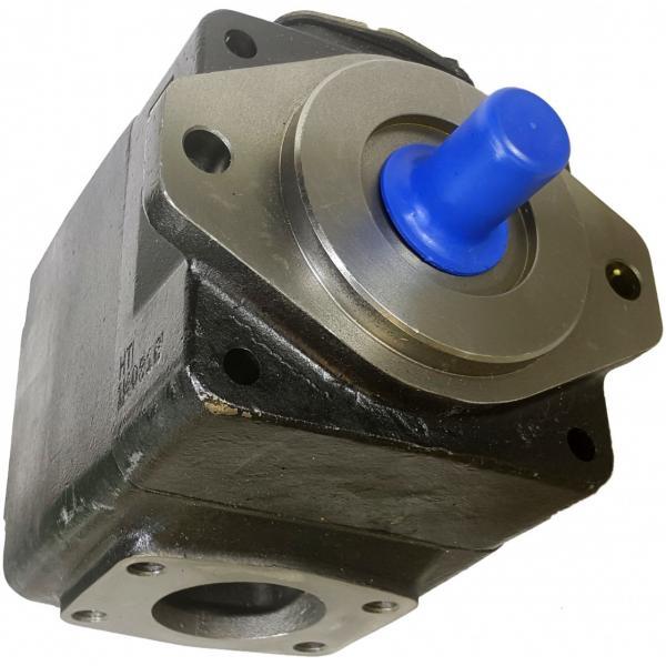 Denison T6D-035-2R00-B1 Single Vane Pumps #1 image