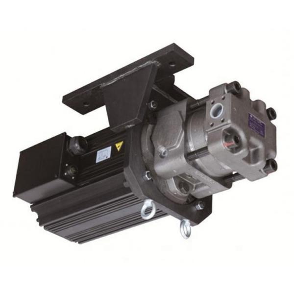Sumitomo QT5243-40-25F Double Gear Pump #1 image