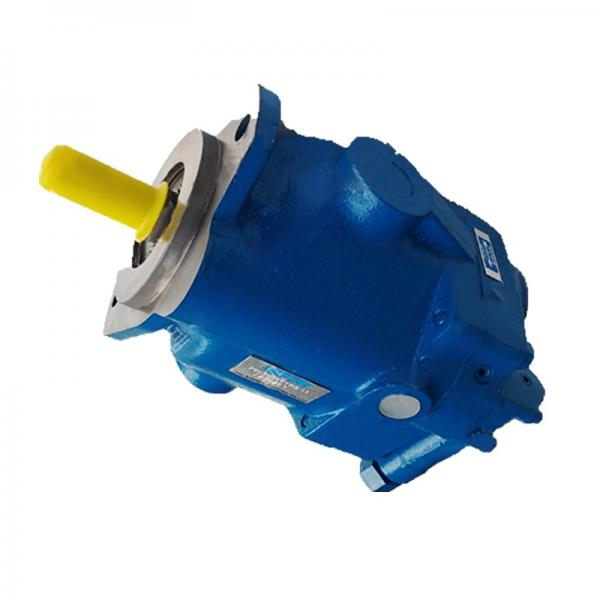 Vickers 4525V50A21-1AA22R Double Vane Pump #1 image